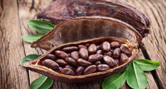 Похудеть и избежать инсульта помогут какао-бобы