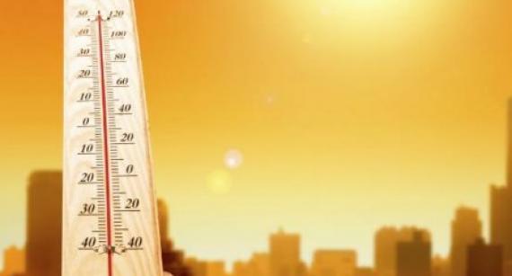 Тёплые вещи и витамины: как не заболеть летом