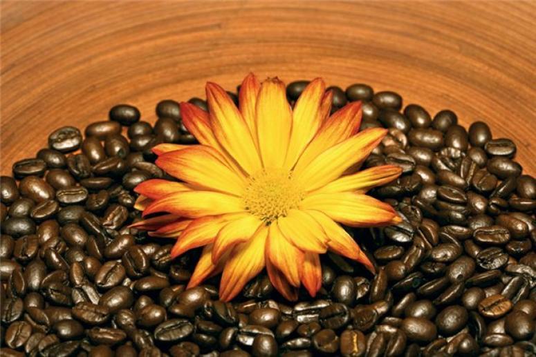 Кофейный скраб от целлюлита
