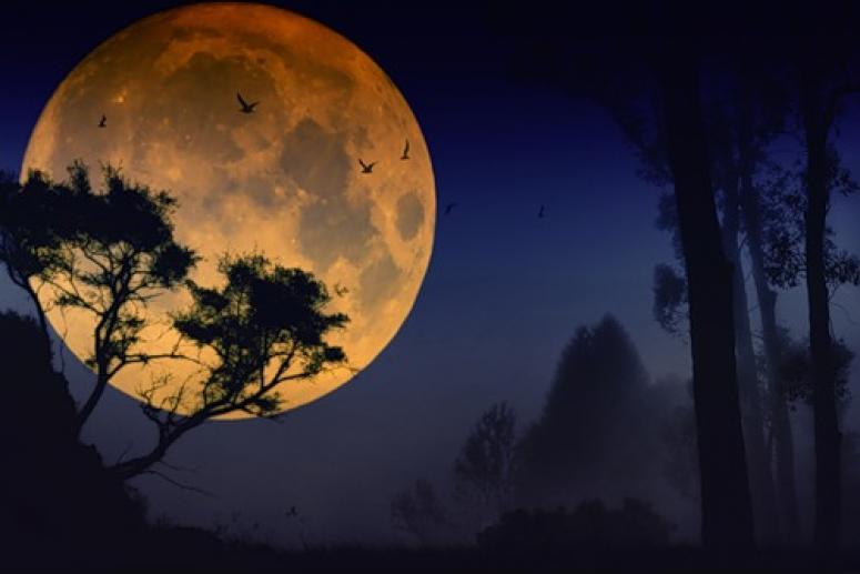 Лунный календарь на июль 2012 года