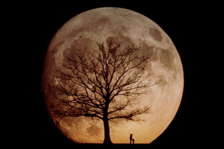 Лунный календарь на ноябрь 2011