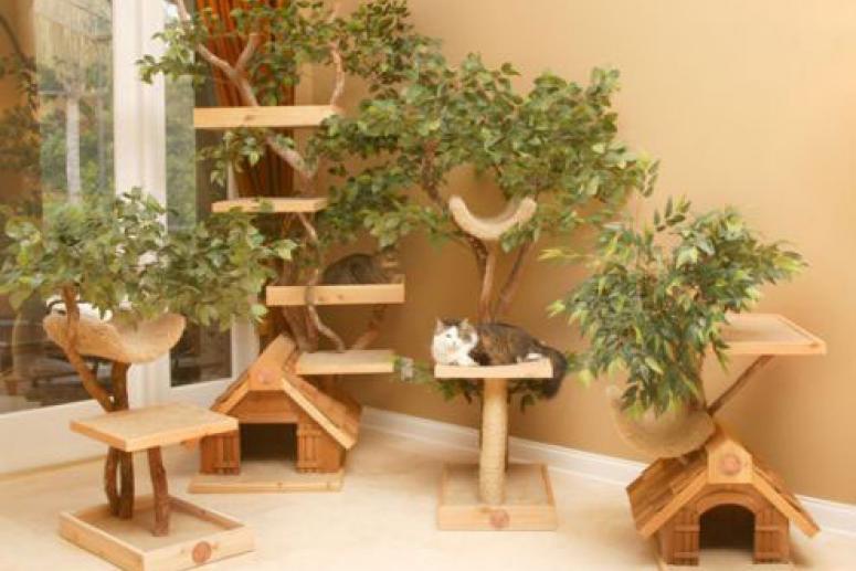 Обустройство места для кошки