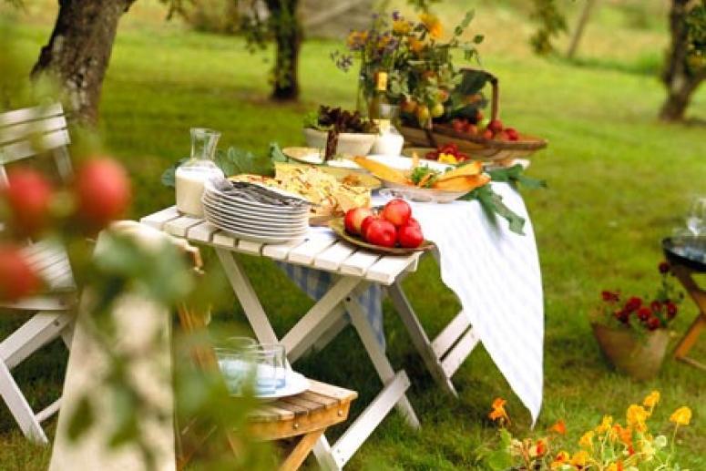 Выбираемся на пикник!