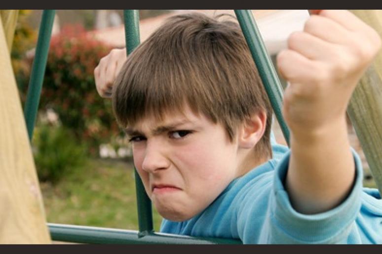 Почему мой сын ведет себя агрессивно?