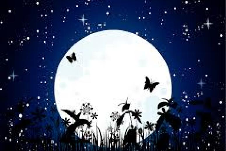 Лунный календарь на ноябрь 2014 года