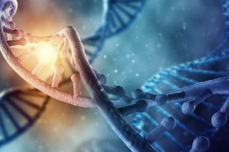 В «мусорных» ДНК человека обнаружили причину рака и деменции
