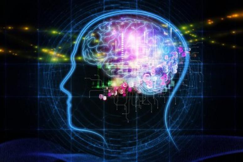 Учёный создал самый короткий тест на IQ