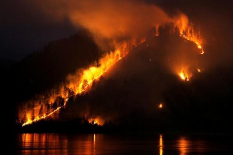 Врач рассказал, как горящий лес влияет на сердце, и дал практические советы
