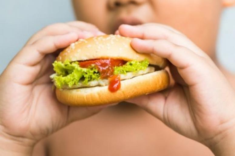 Энергетический дисбаланс наиболее часто приводит к ожирению