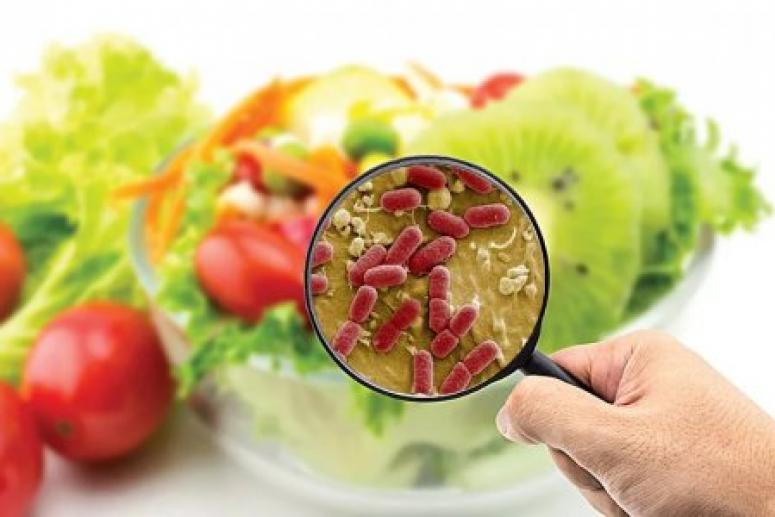Холера и ещё 4 опасные инфекции, которыми можно заболеть из-за еды