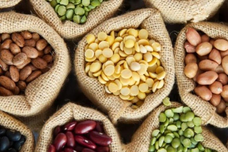 Эксперты рассказали о пользе и вреде бобовых культур