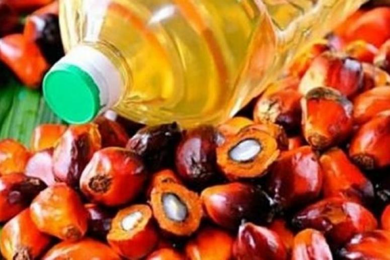 Роспотребнадзор назвал полезные и вредные свойства пальмового масла