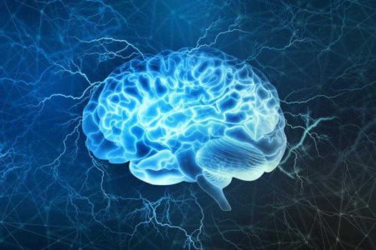 Без проблем: мужчина всю жизнь прожил с половиной мозга