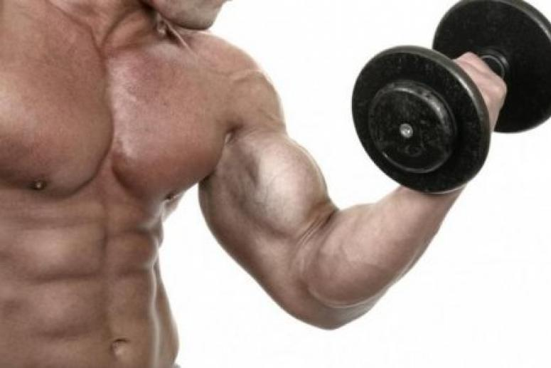 Мышечная сила рук передается по наследству