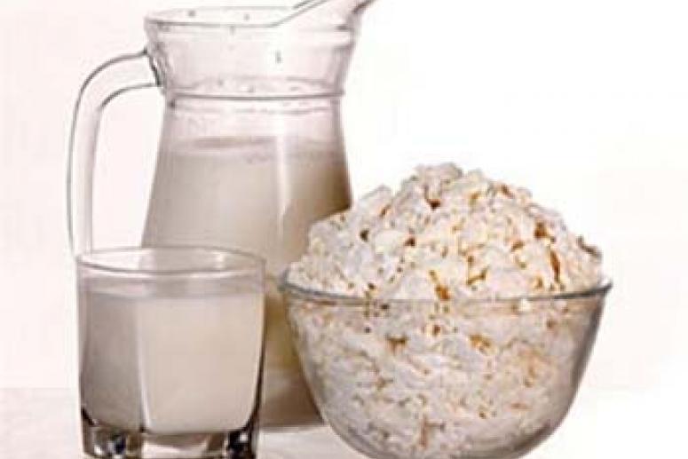 Йогурт и творог – основа диеты